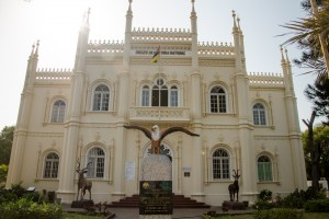 Maputo Natural History Museum (photo by Sarah Duff)