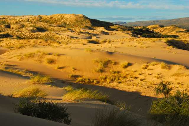 A dune in Witsand (Shutterstock)