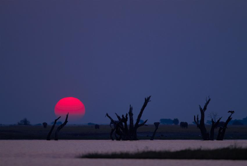 Chobe river sunset (Shutterstock)