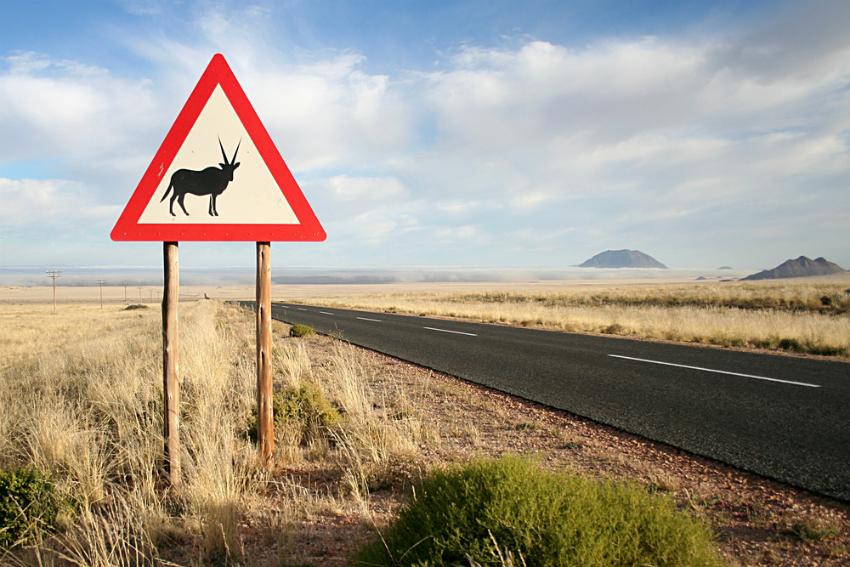 zimbabwe road