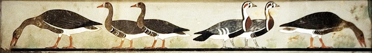 Meidum Geese, Cairo Museum (wikipedia)