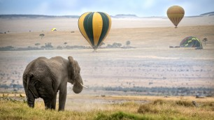 safari in kenya