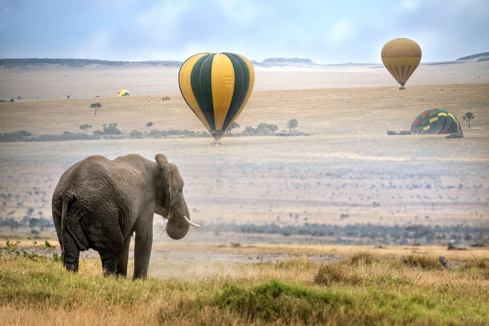 chinese tourism in east africa