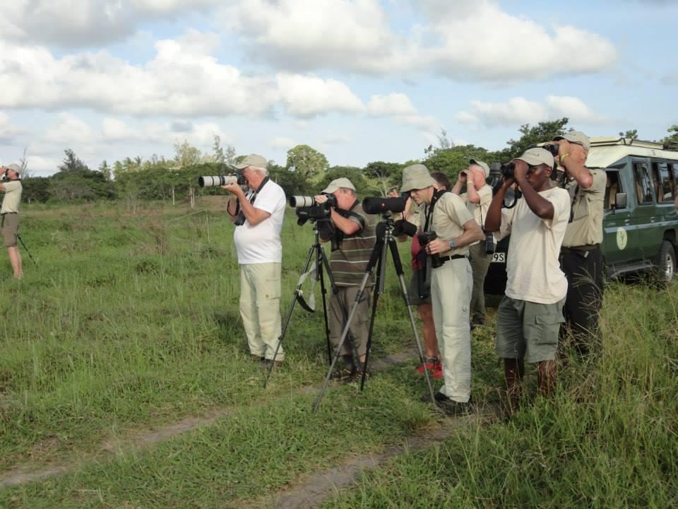 Crab Plover, Kenya (courtesy Kenya Birding Safari & Wildlife Photography Vacations/Facebook)