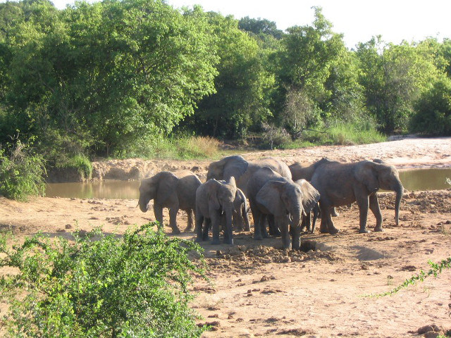 15 Great Natural Places In Nigeria