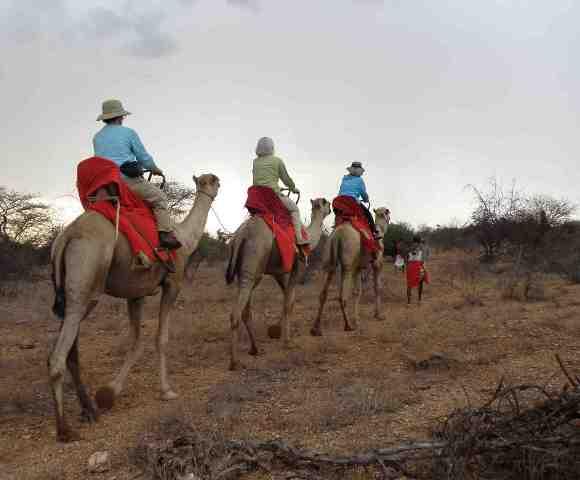 Camel ride (courtesy SayariAfrika)