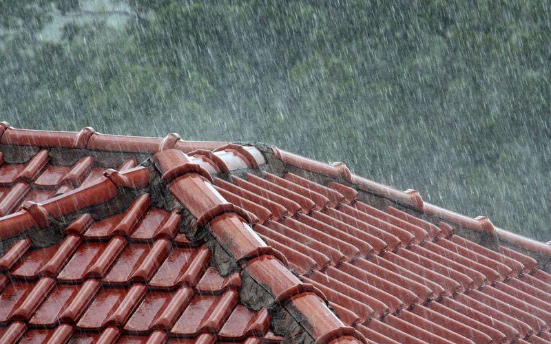 Rainy season (Edal Anton Lefterov/Wikimedia Commons)