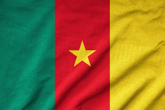 Cameroon Flag Meaning