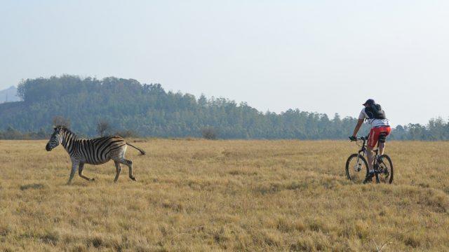 swaziland bike safari