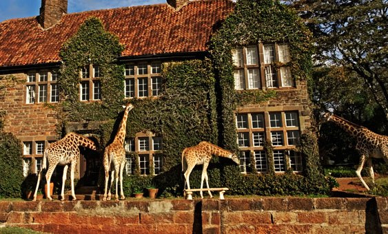 The Giraffe Manor (Credit:Wharfview.com)