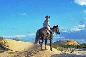 Mozambique Horse Safaris
