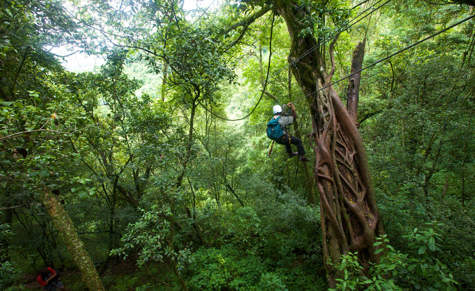 Karkloof Canopy Tour & 10 Best Ziplines and Canopy Tours in Southern Africa | AFKTravel
