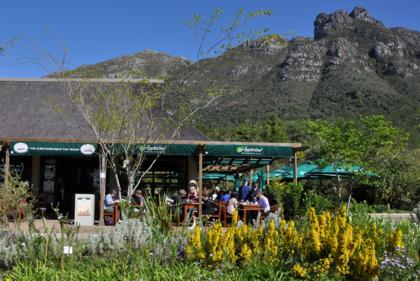 kirstenbosch tea room