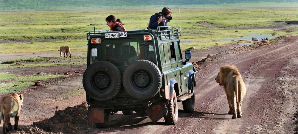 15 Mistakes To Avoid On An African Safari