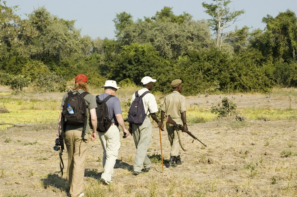 walking safari luangwa