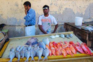 mauritius fishermen