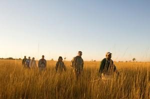 walking in botswana