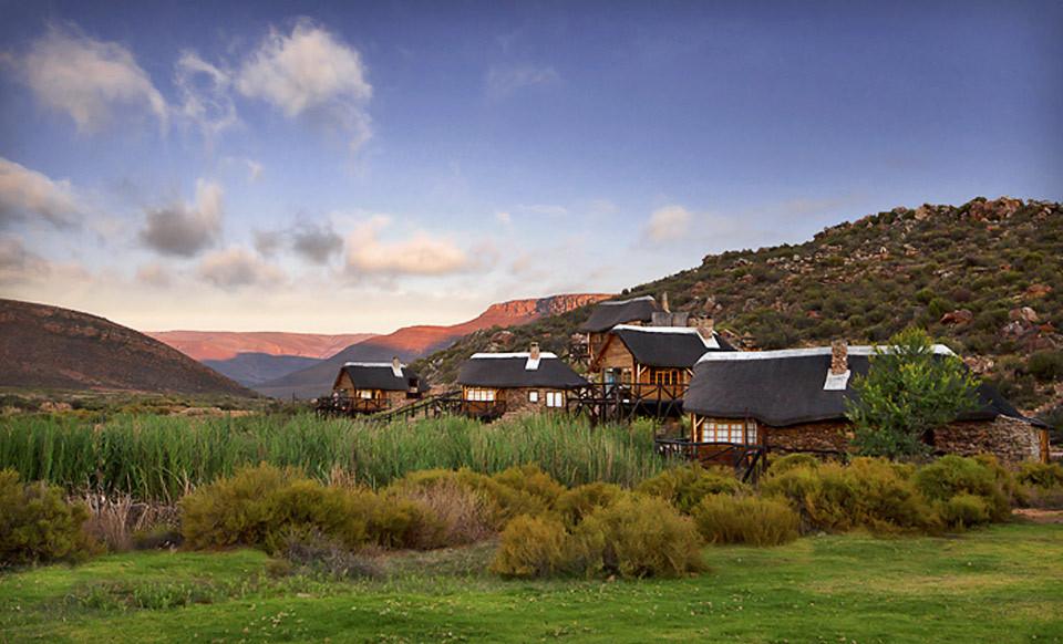Aquila Private Game Reserve - Day Trip Safari (Cape Town ...