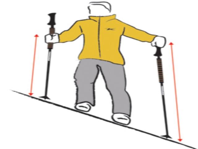 Trekking Poles (Komperdell/Cactus26/Wikimedia Commons)
