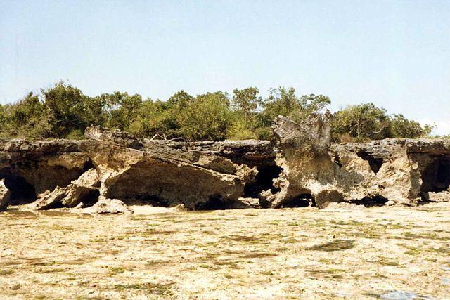 Mbudya Island (russavia/mwanasimba from La Réunion/wikimedia commons)