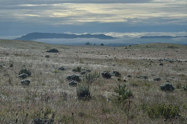 Kitulo National Park (Jojona/Wikimedia Commons)