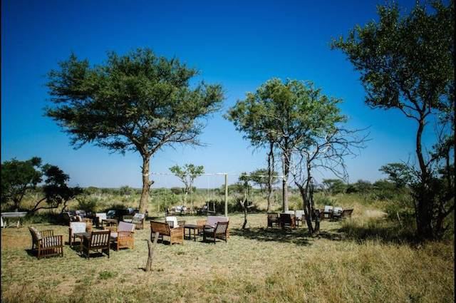 (Photo courtesy of Bushfellows Private Game Lodge)