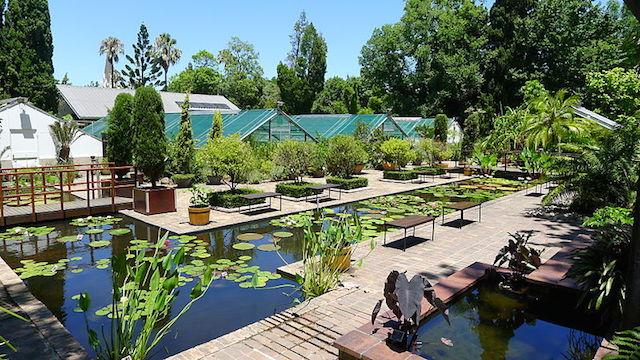 botanical garden in stellenbosch