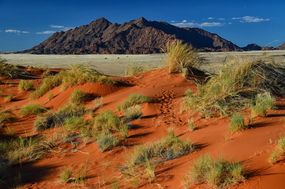 elim dune sossusvlei