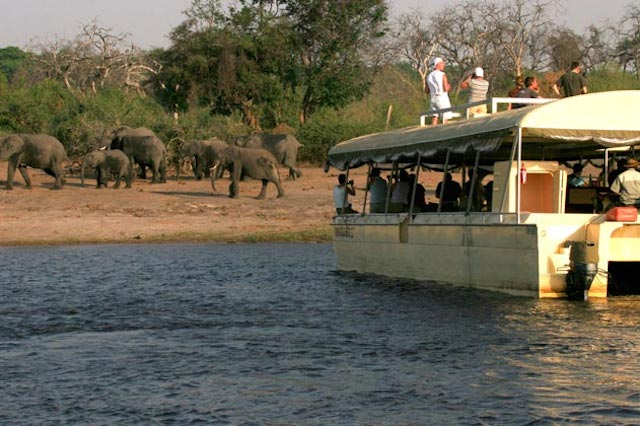 Chobe River Boat Cruises in botswana