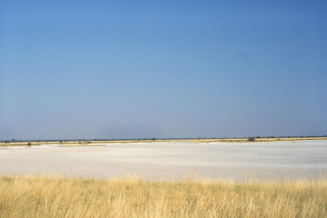 Salt Pan, Nxai Pan National Park, Botswana