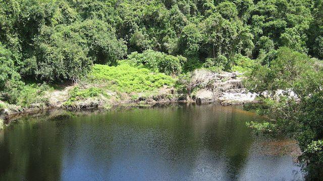 Wilderness_National_Park in garden route