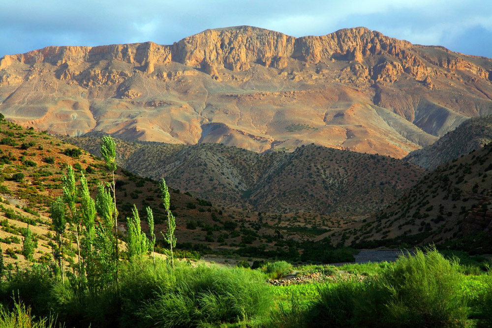 atlas mountains green