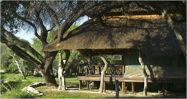 edos camp in botswana