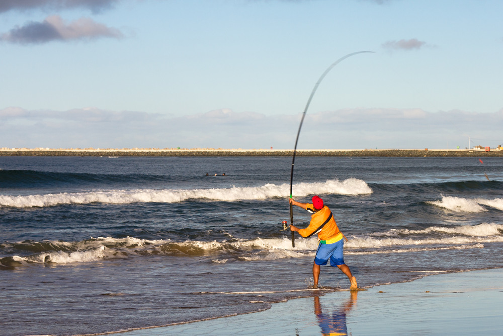 15 of the best fishing trips in southern africa page 10 for South carolina surf fishing