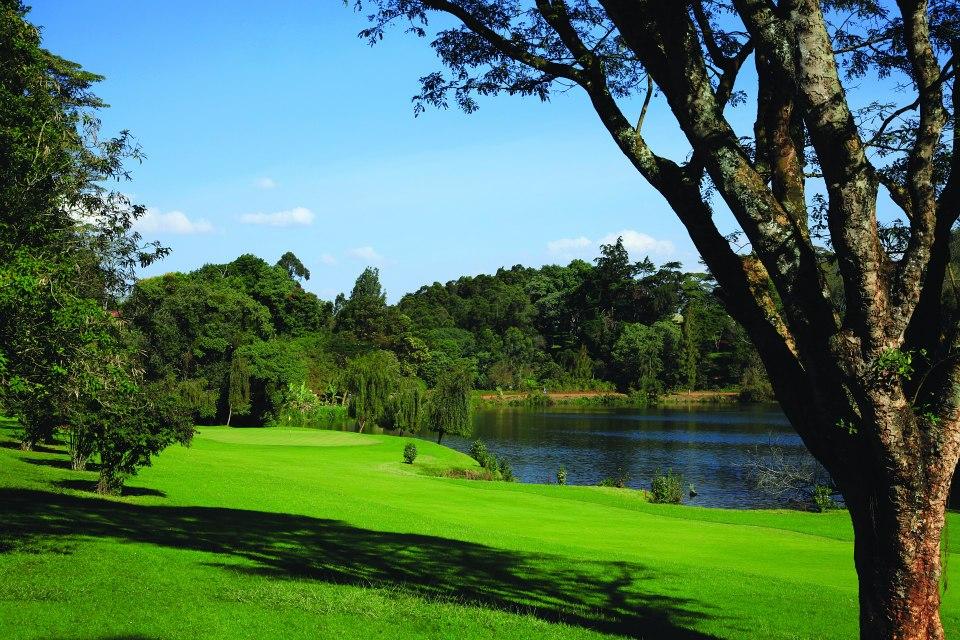 limuru golf club