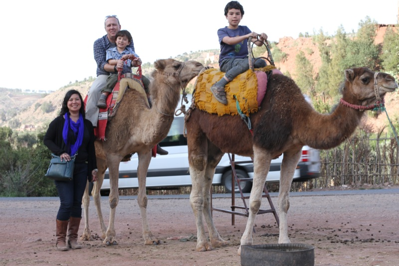Bring the kids!: 15 Family Fun Things To Do In Marrakech
