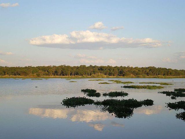Lake_Chivero in harare