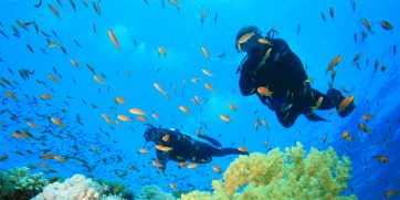 diving in cape verde