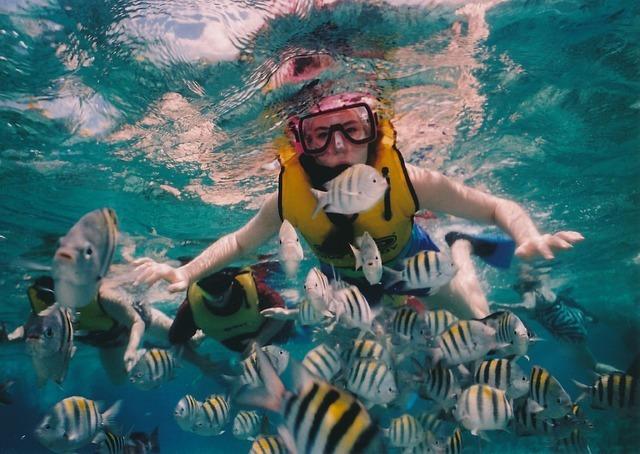 snorkel in durban