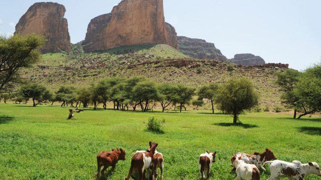 mountain in mali