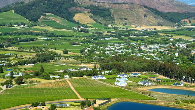 wine farm south africa