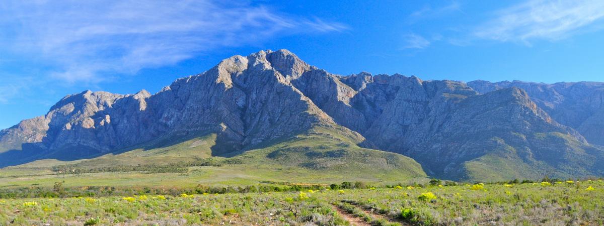 Escape Into Nature: 10 Wondrous Western Cape Hikes
