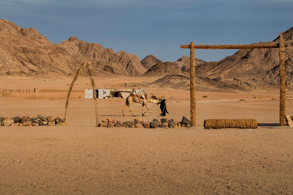 desert landscape egypt