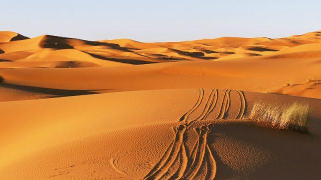 desert quadbiking