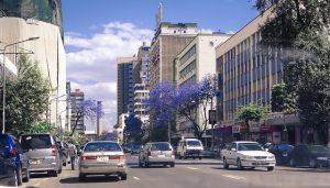 jacarandas downtown nairobi