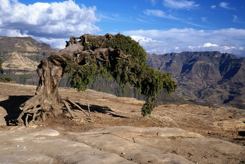 lalibela highlands