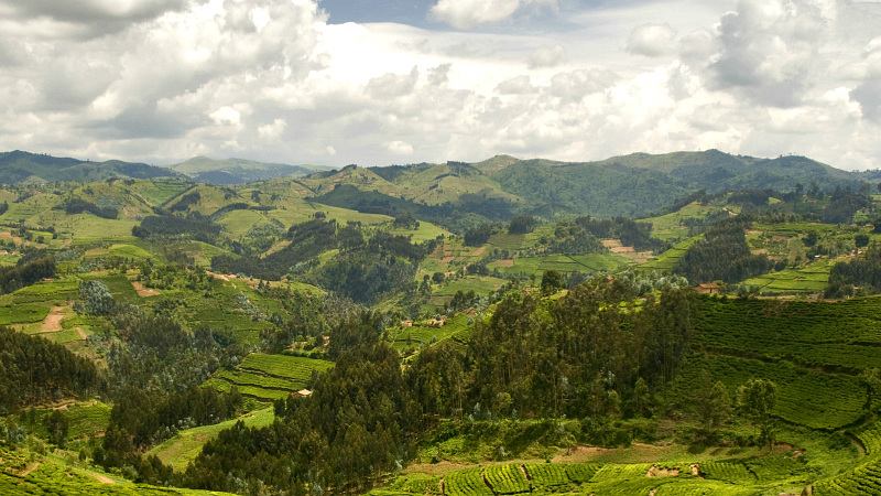 rwanda hills