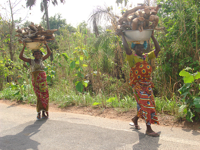 ivory coast agriculture