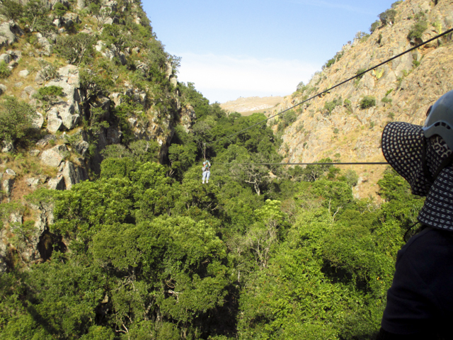 Malolotja Nature Reserve in the northwest of Swaziland with its grasslands and mistbelt forests offers hiking trails, bird watching, camping and a treetop canopy tour-2
