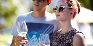 constantia wine